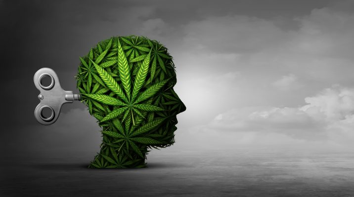 Brain's reward system may promote heavy cannabis use, while habit system  may advance addiction: study - Money Works Magazine